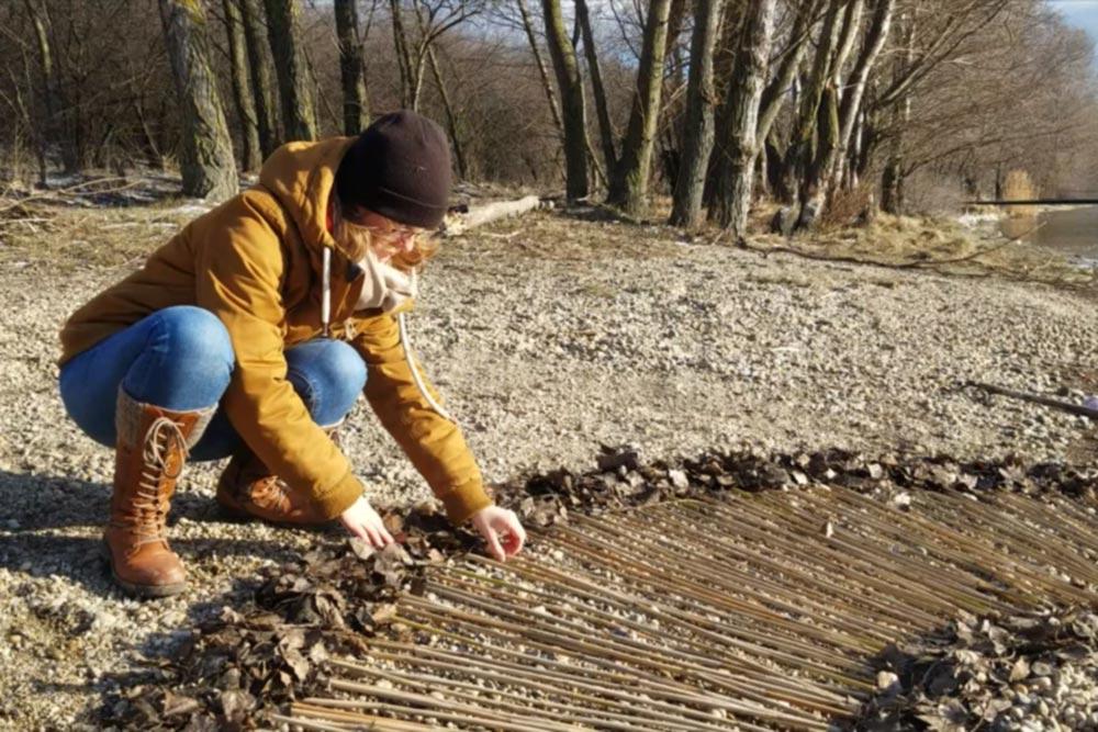 Bildergalerie 9 Donauinsel Landart von Art Traveller auf art-traveller.com