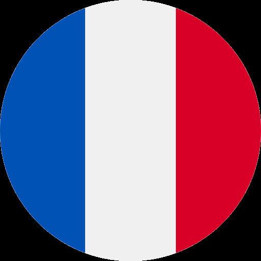 Destination Frankreich Flagge